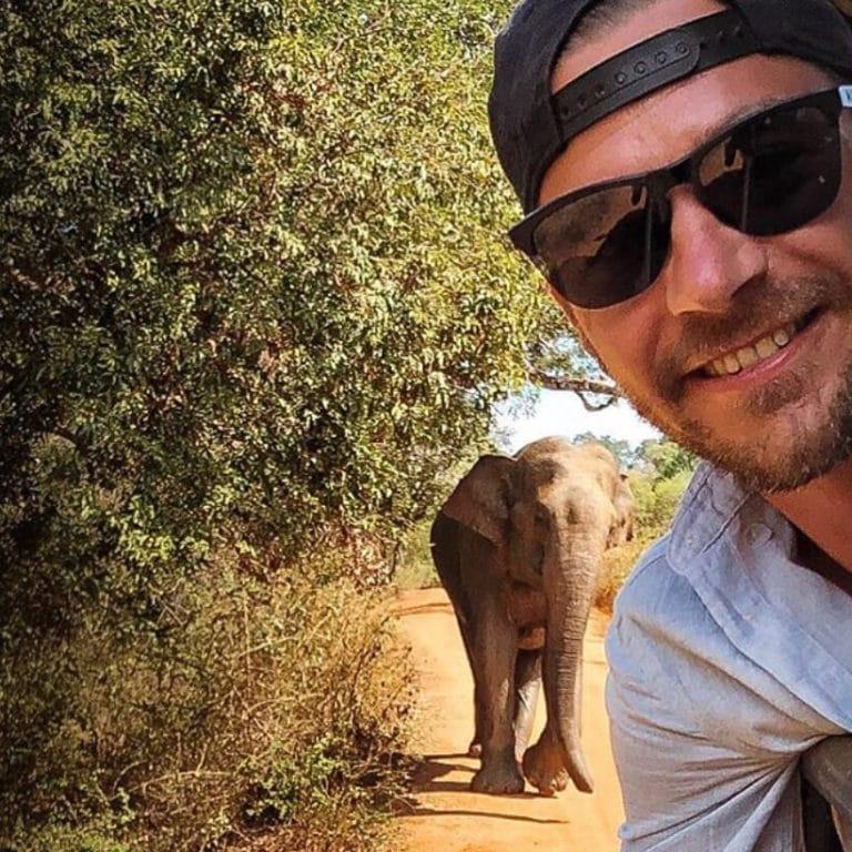 Reiseblog Travel Eat Love - Sri Lanka Elefant